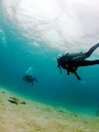 沖縄 ダイビング 糸満 ダイバー