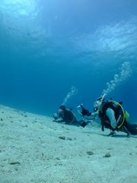 水納島と瀬底島は水中写真向き