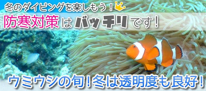 沖縄のダイビング防寒対策